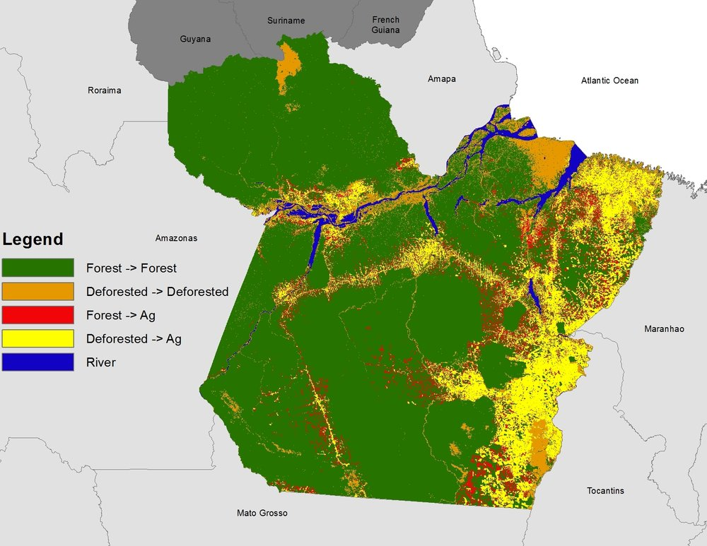 """Projected deforestation under """"no enforcement"""", """"some enforcement"""", and """"strict enforcement"""" from top to bottom. The bright green is areas that are at risk of deforestation under the different policy enforcement scenarios. The purple represents the previously deforested areas in Para. Map created using the UPLAN land use model using ArcGIS and edited by Photoshop and Illustrator by Sahoko Yui."""