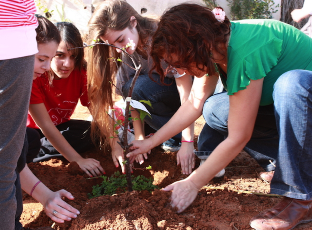 Today Tu Bishvat is looked upon as an opportunity to teach the next generation about ecology, the environment and stewardship for the gifts God has given us.  The holiday is celebrated in a congregational setting.  In addition to planting trees there is also a seder meal similar to the seder celebrated at Passover.   https://www.myjewishlearning.com/article/tu-bishvat-practices/