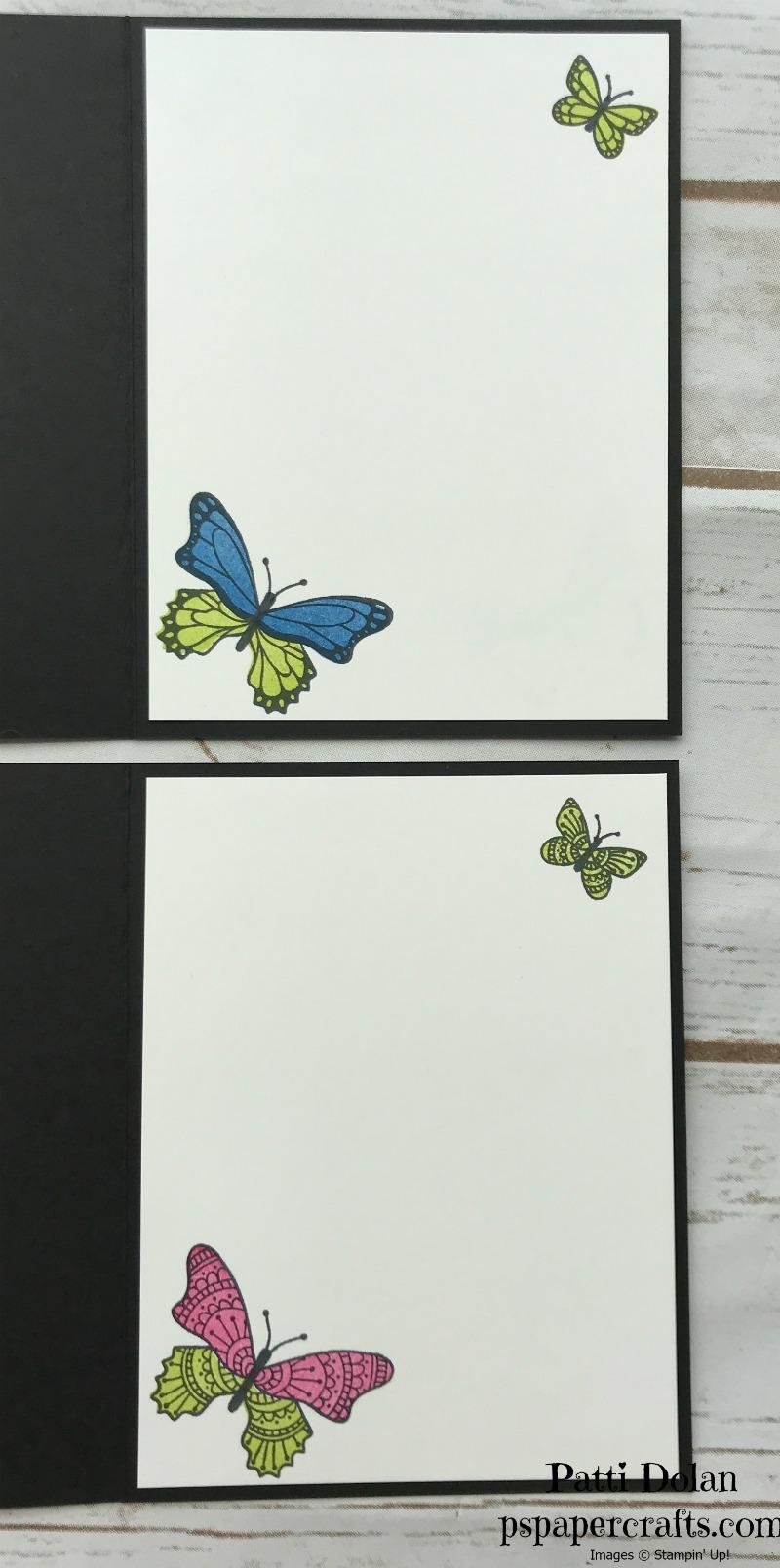 butterfly gala inside.jpg