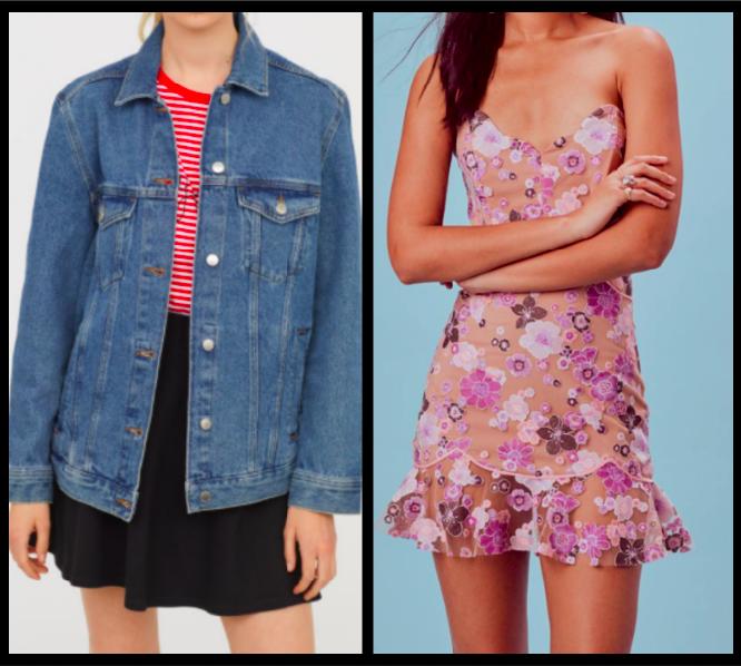 Jacket:  $24.99  / Dress:  $342