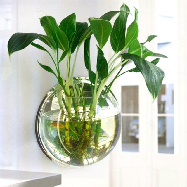 Pot-Plant-Wall-Mounted-Hanging-Aquarium-Transparent-Acrylic-Fish-Bowl-Fish-Tank-Flower-Plant-Vase-Home.jpg_640x640.jpg