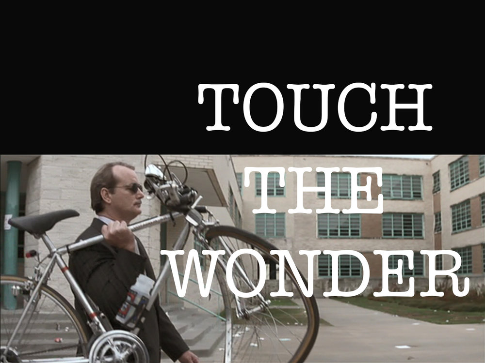 touch wonder bike wolf.jpg