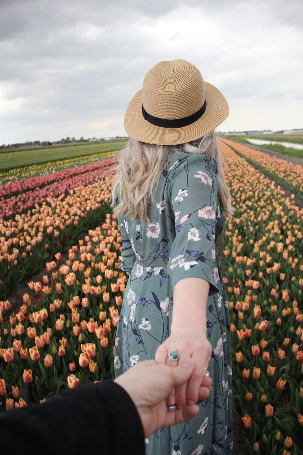 follow me to Keukenhof tulip fields