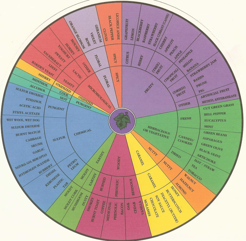 Wine Flavor Wheel (original source unknown)