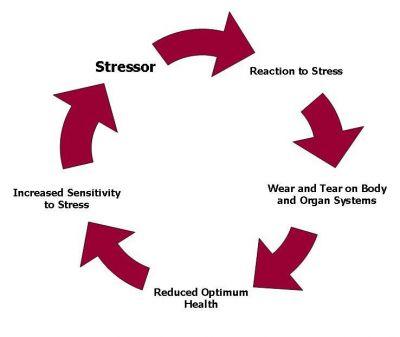 chronic-stress-diagram.jpg
