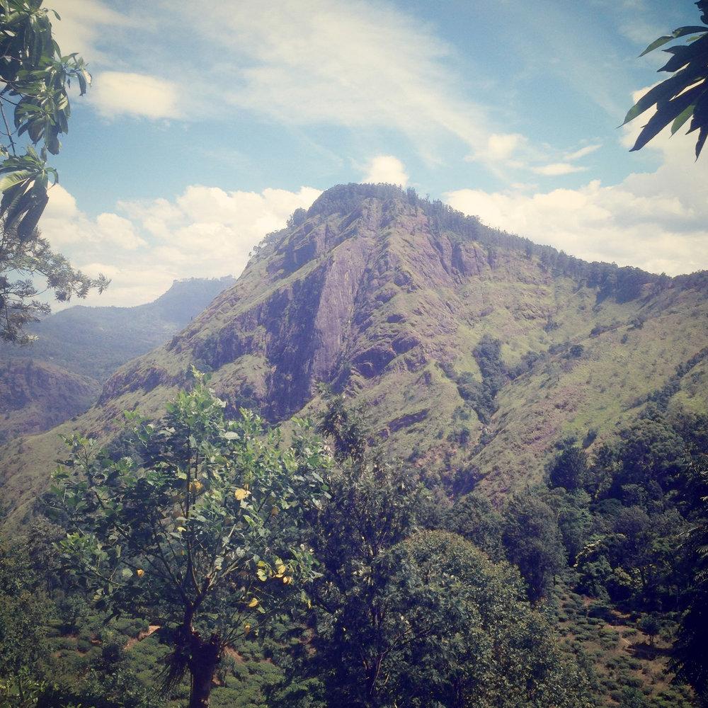 Ella Rock, well worth the hike.