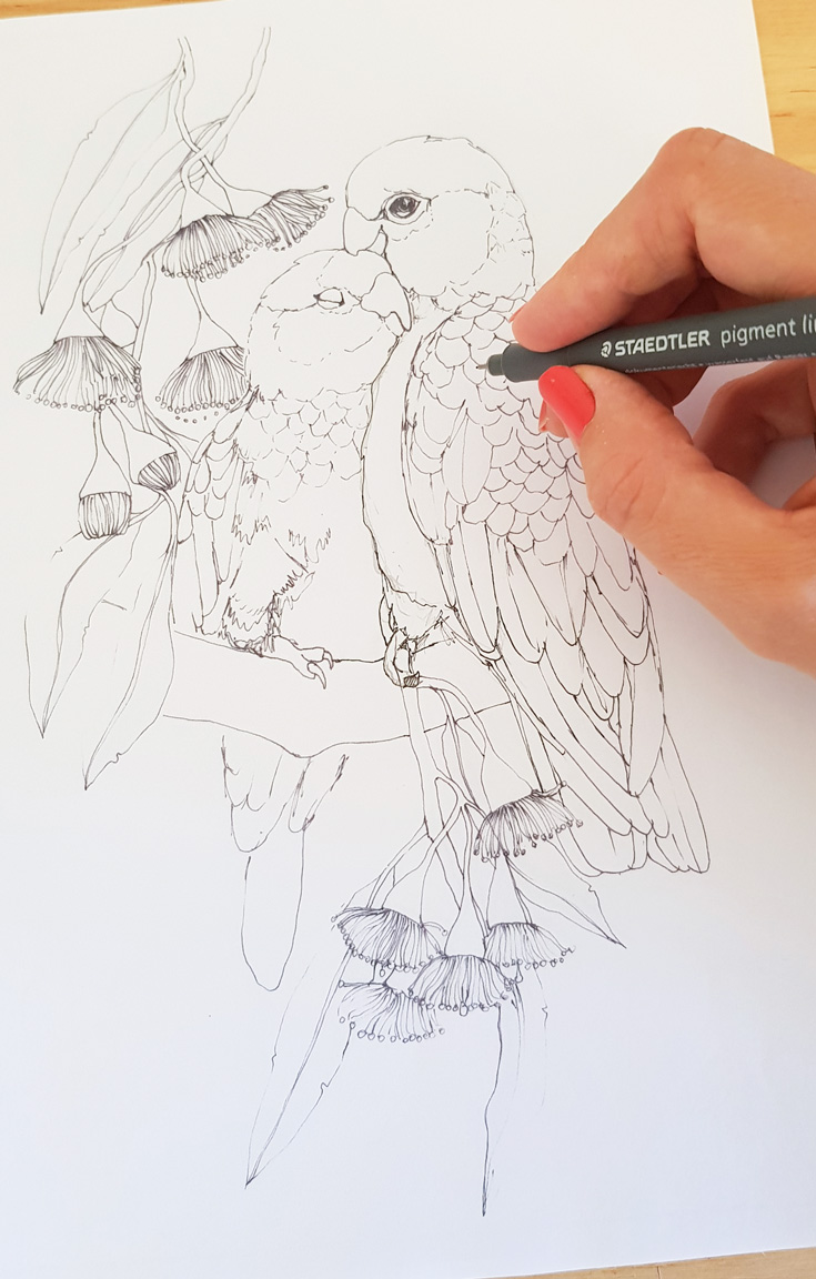 galah-sketch-work-in-progress.jpg