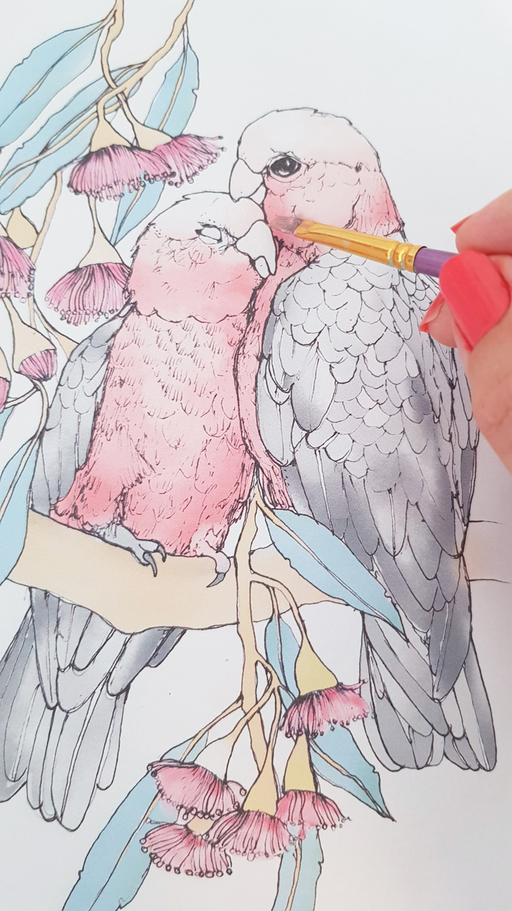galah-paint-work-in-progress-lovebirds.jpg