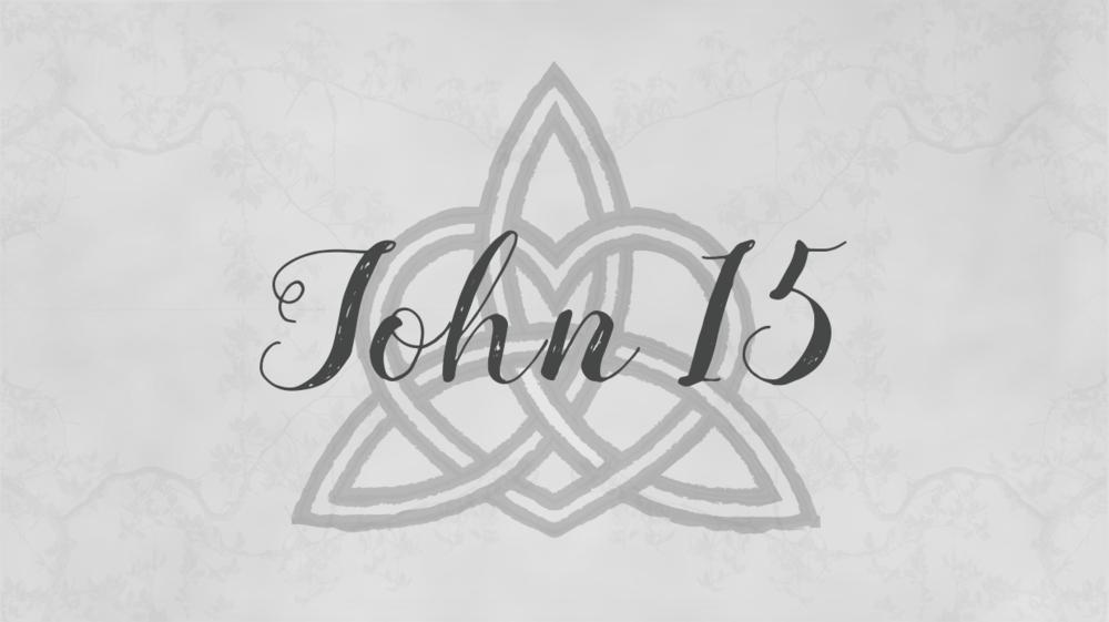 John 15.png