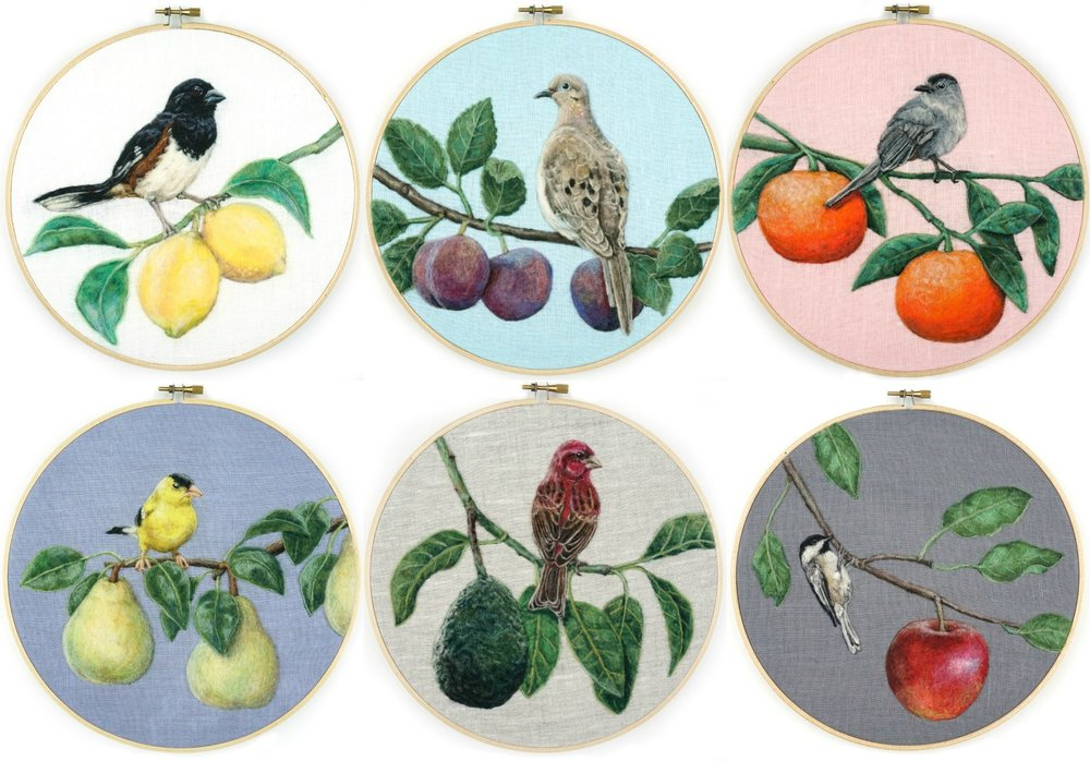 Orchard Birds Collage 001-006.jpg