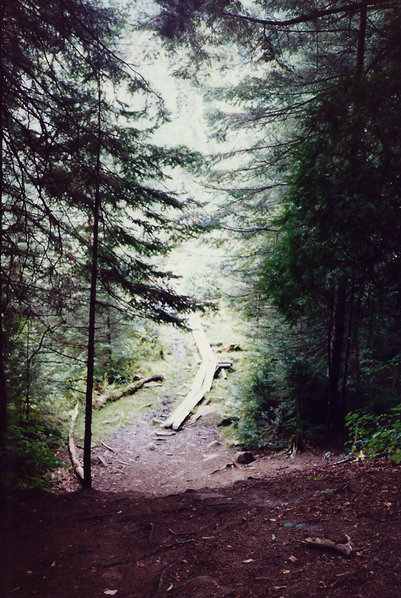 The end of the last portage and walkway into the Daisy Lake put-in