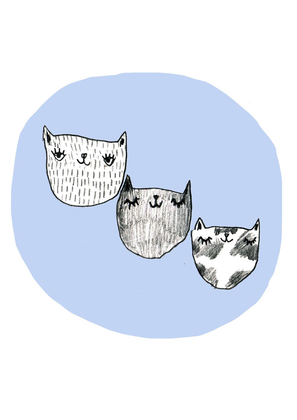 blue cats.jpg