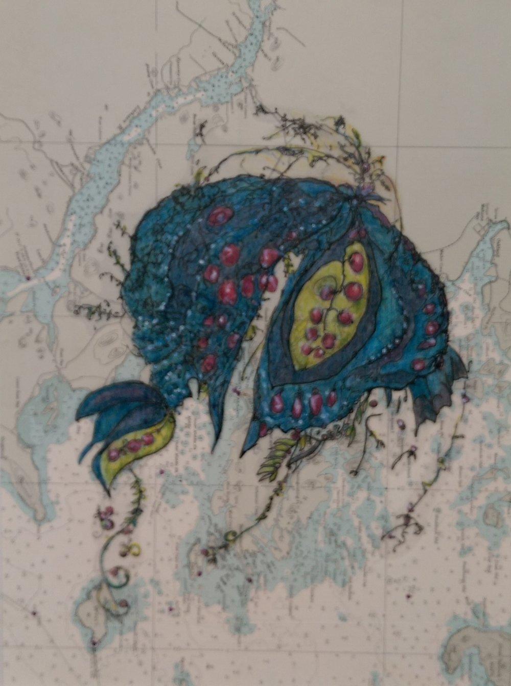 blue moth ocean.jpg