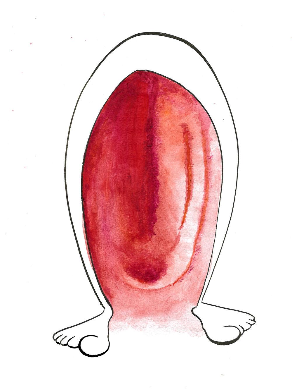 Red Legs 1.jpg