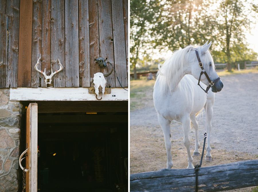 Horse-Ranch-Engagement_03.jpg