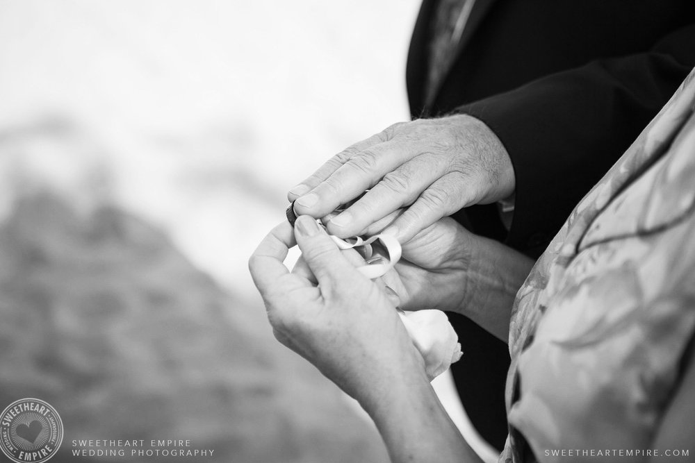 Wedding ceremony, Toronto Island Elopement