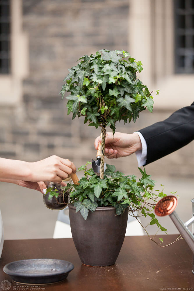 Bride and groom planting a tree during marriage ceremony, Hart House University of Toronto Wedding