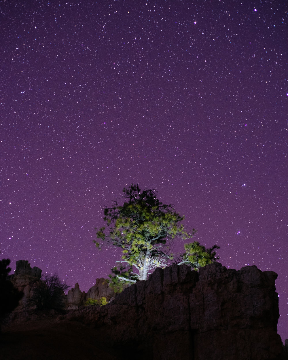 landscapes_for_stonecanyoninn (5 of 8).jpg
