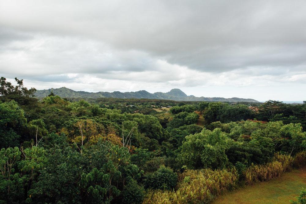 mikewwalton-kauaibanyan-5.jpg