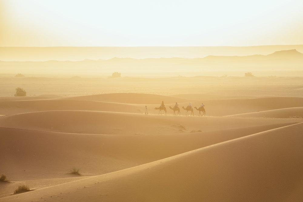 mikewwalton-desert-palace-12.jpg