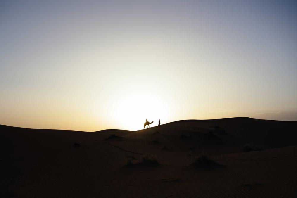 mikewwalton-desert-palace-1.jpg