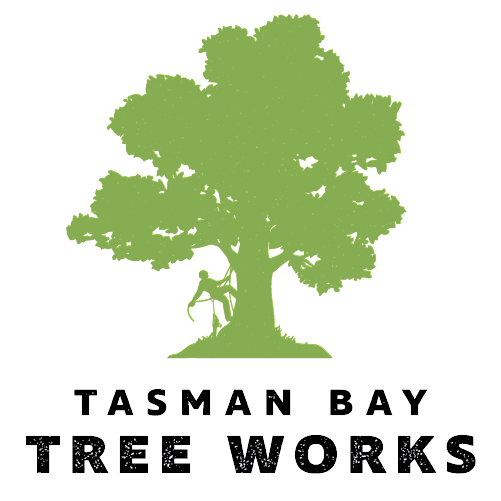 Tasman Bay Tree Works
