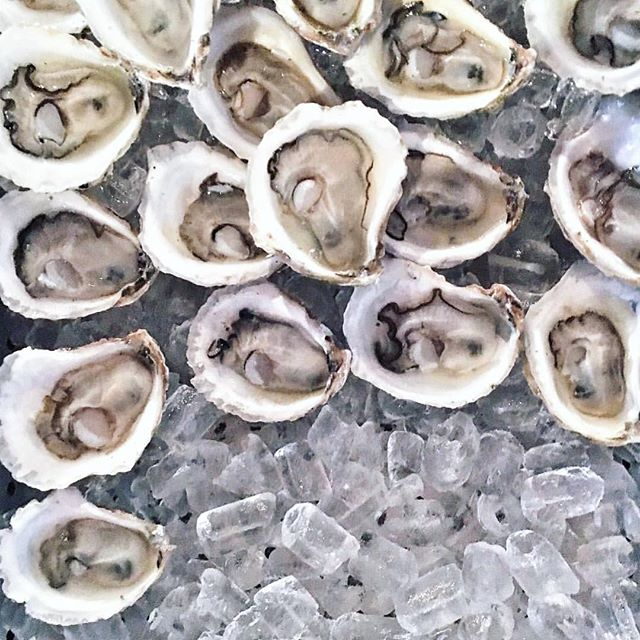 It's #oyster Tuesday! Stop in for $20 dozens & 1/2 price bottles of wine🍷 Is there a better deal? #datenight