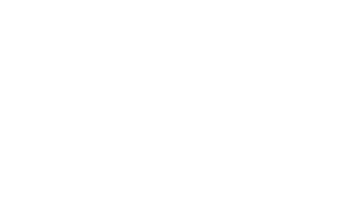 Bartlett Sports, Inc.