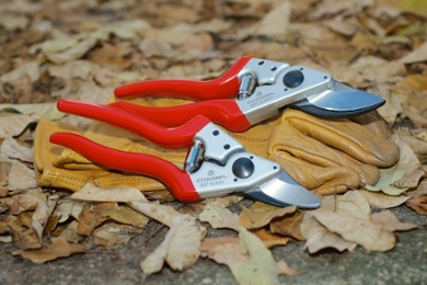 Corona - Hand-held pruners and shears