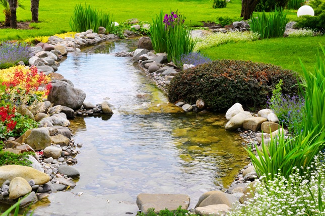 Healthy Components of a Pond - Naturally balanced ponds require much less maintenance. In this article, learn how to create and maintain a healthy functioning pond.