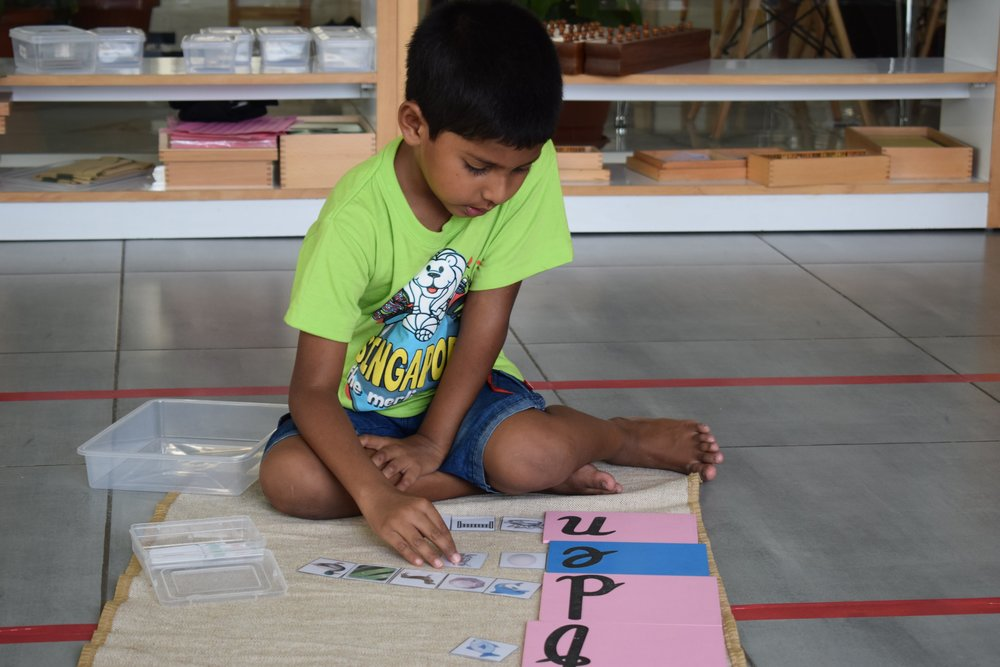 Building words with the movable alphabets