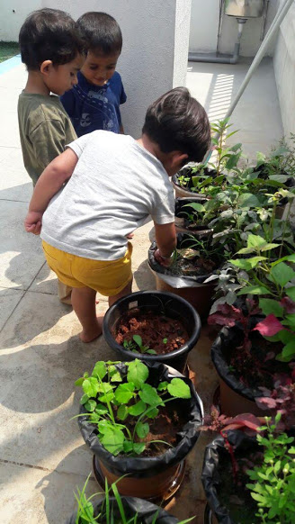 Toddlers gardening the terrace plants