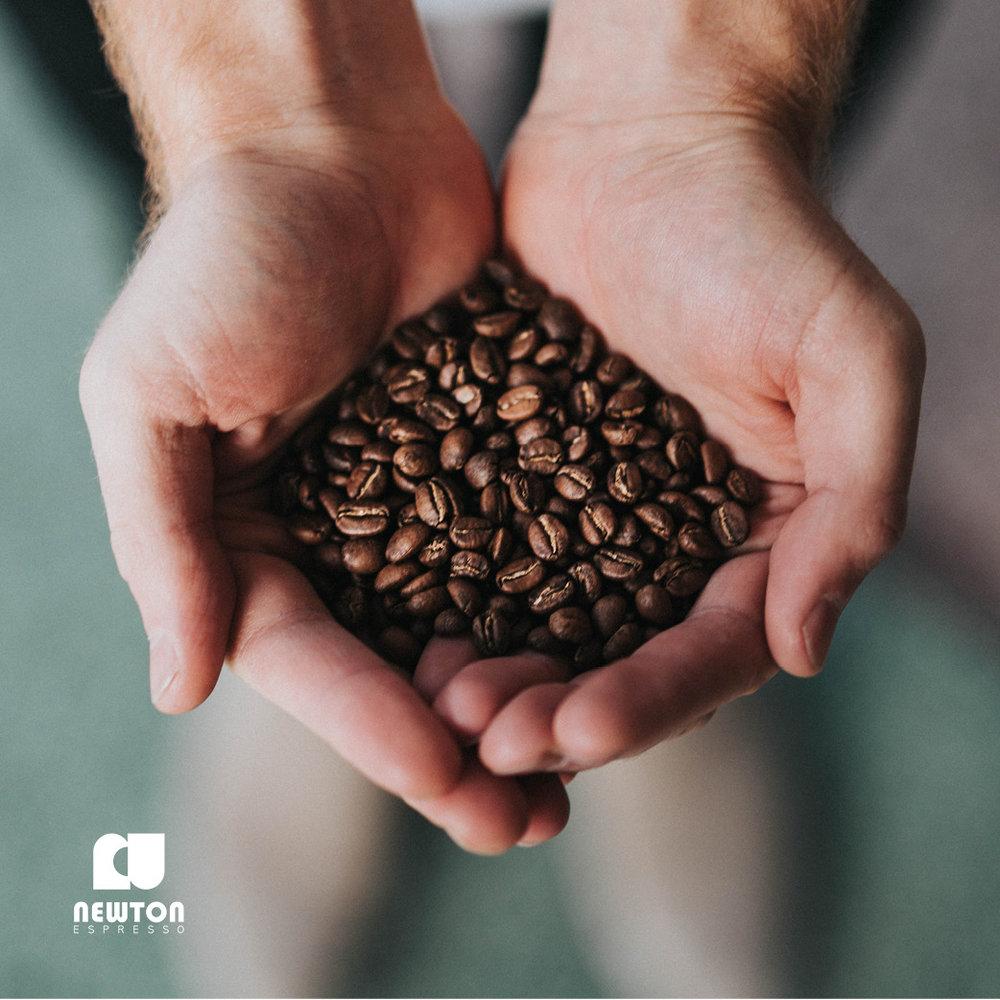 Newton Espresso
