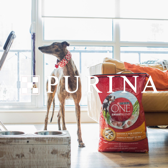 Purina Bright.jpg