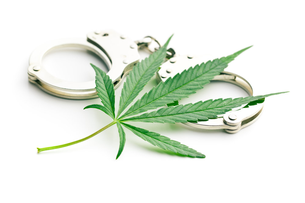Cannabis Criminal.jpeg