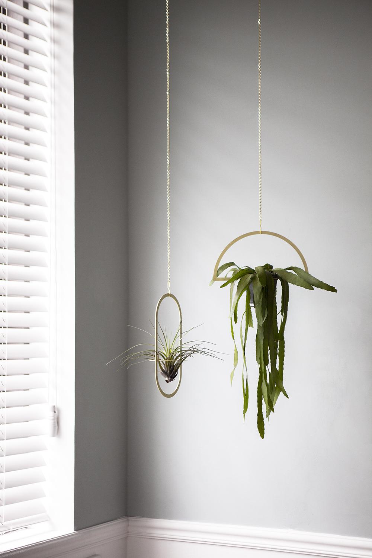 Plant Mobile 1.jpg