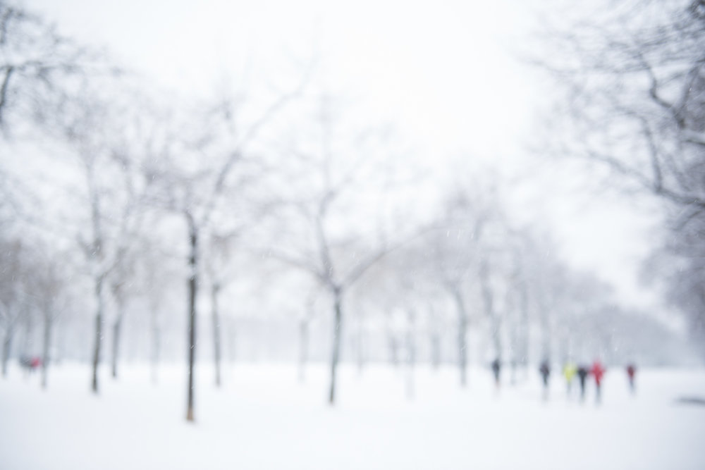 Blizzard in Paris - 1
