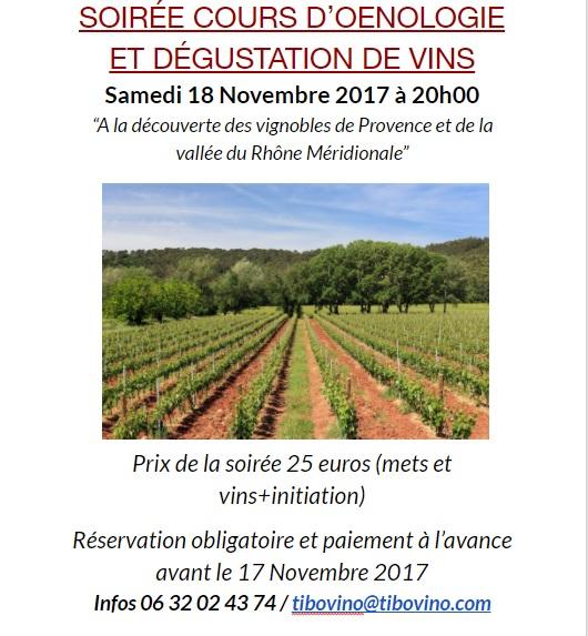 degustation-vin-cours-oenologie-toulouse-blagnac2.jpg
