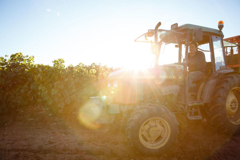 Fotografía comercial La Rioja y Pais Vasco Espana - James Sturcke | sturcke.org_024.jpg
