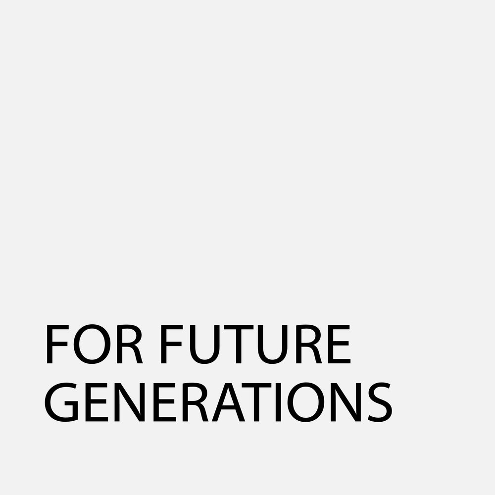 FutureGenerations95Grey.jpg