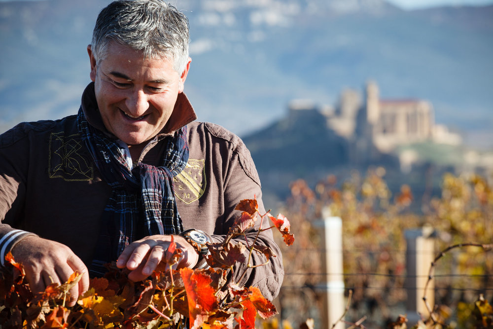 19/11/12 José Manuel y las Viñas de Bodegas Ijalba con San Vicente en el fondo, Ruta de Vino riojano, España. Foto: James Sturcke | www.sturcke.org