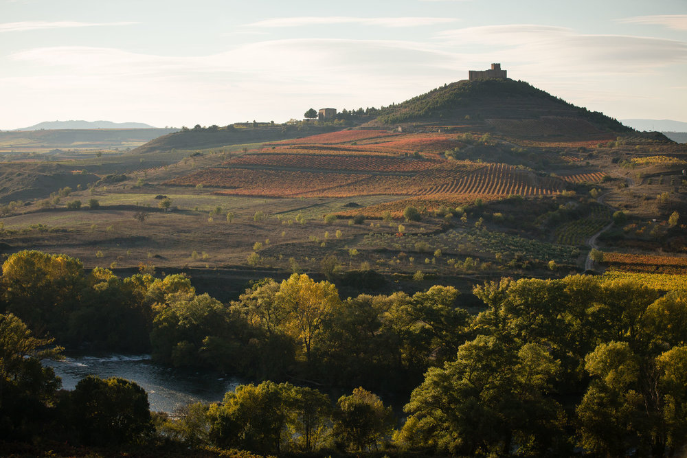 22/10/15 River Ebro and Davalillo castle among vineyards, La Rioja, Spain. Photo by James Sturcke | www.sturcke.org