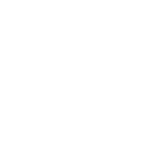 Gourmet Coffee Bags - New Kings Coffee