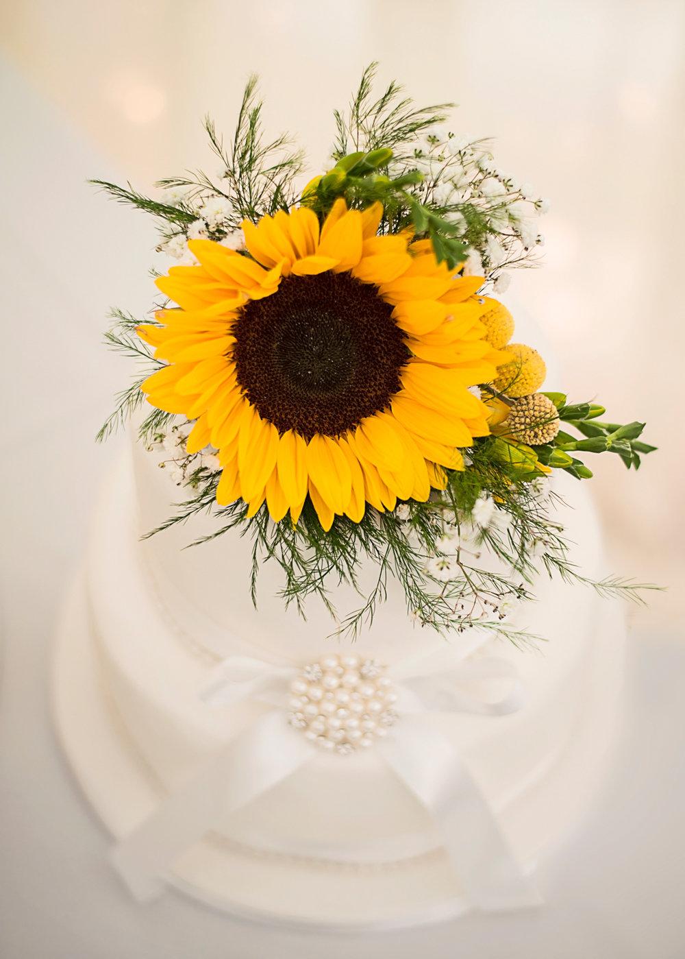 Wedding cake | Pentre Mawr