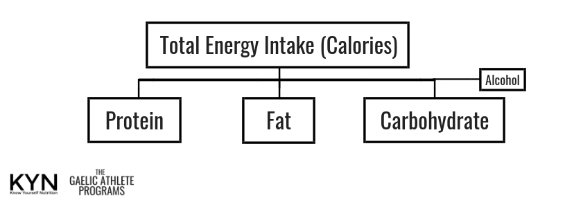 Copy of Energy Intake.jpg