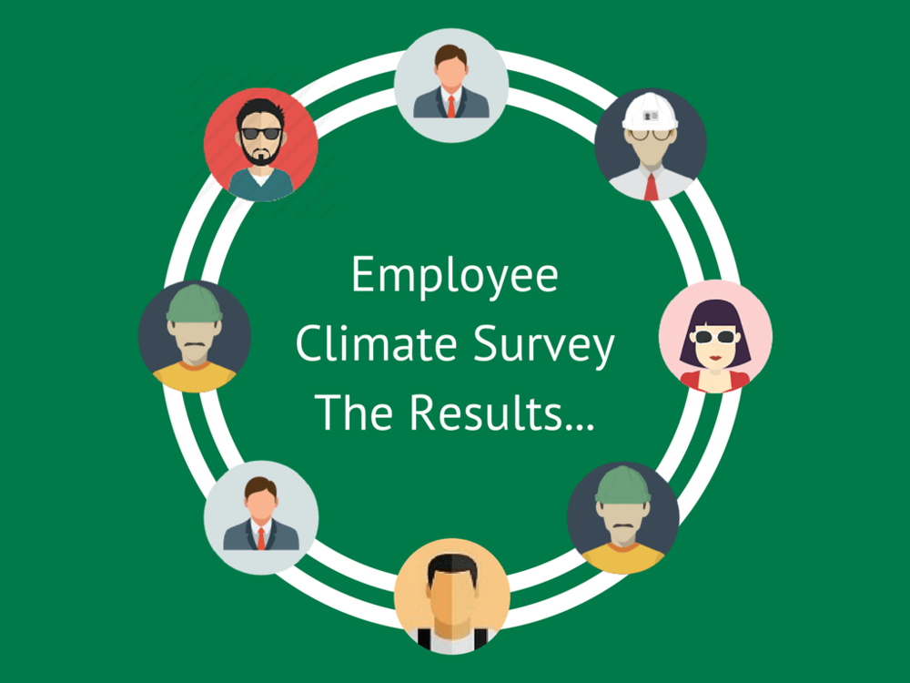 Camerons Employee Climate Survey (5) (1).png