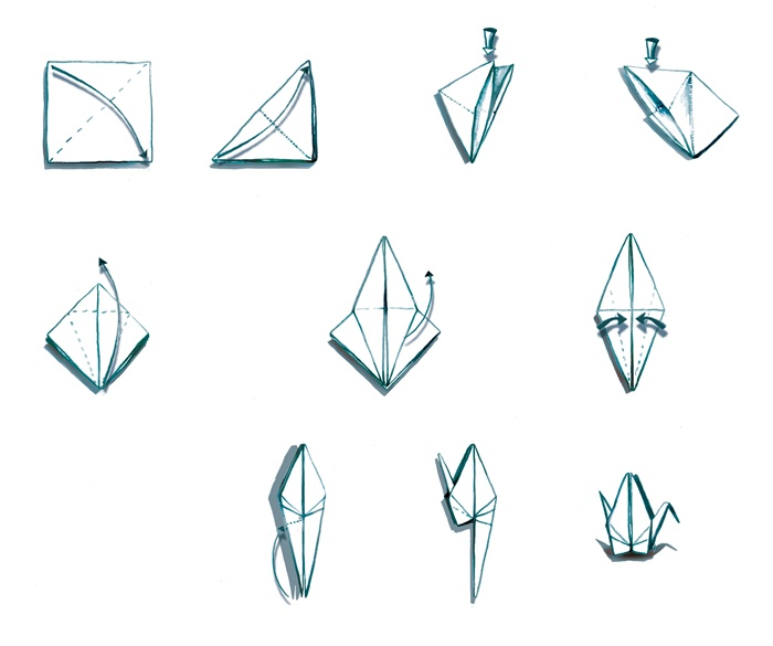 Sketches of paper-bird making procedure