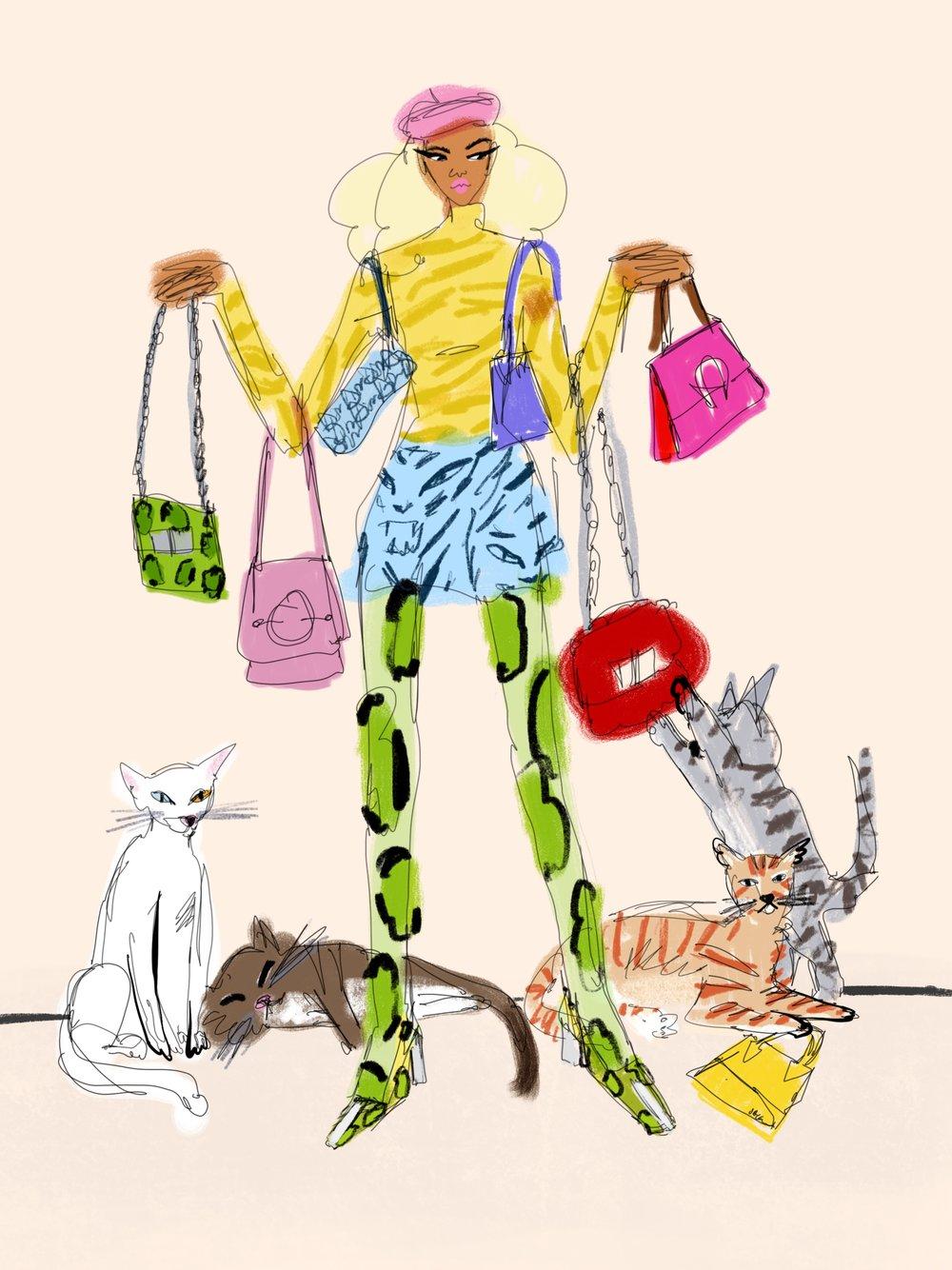 Bag_Lady_Cat_Lady_.jpg