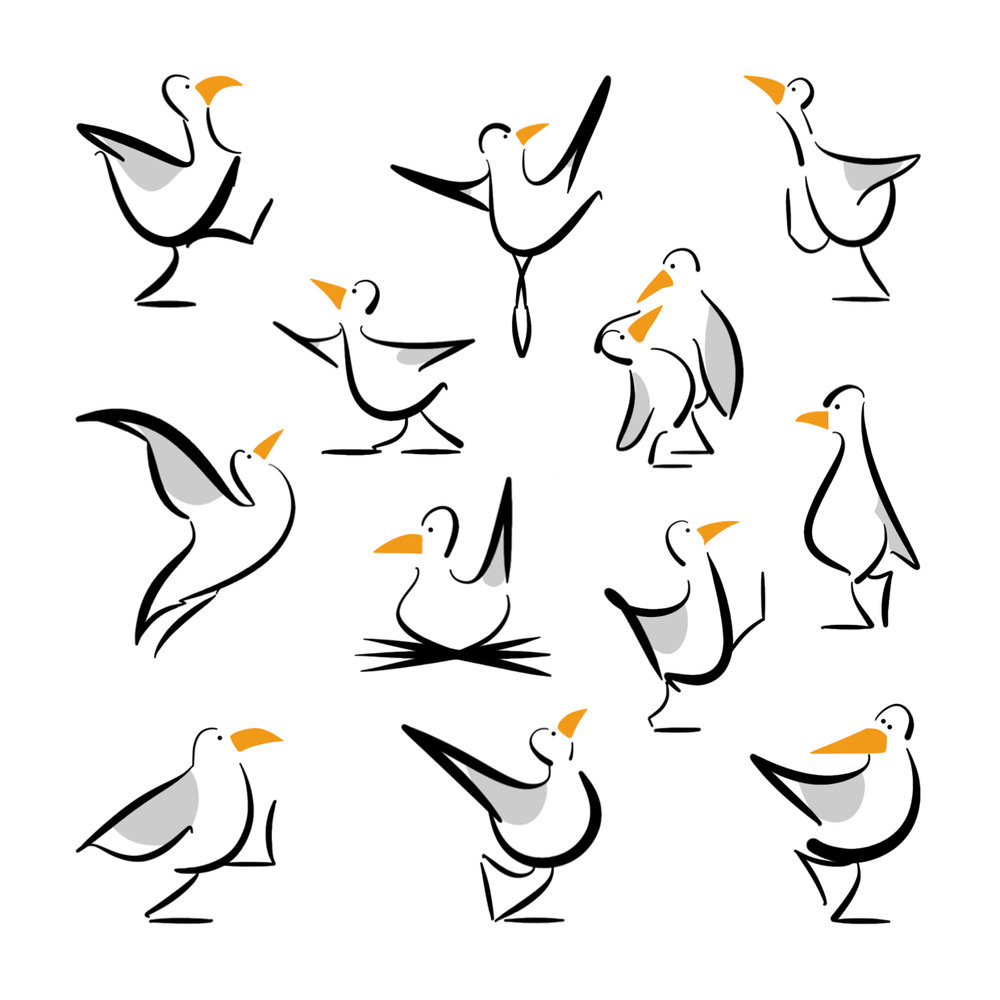 Seagulls Square Format.jpg