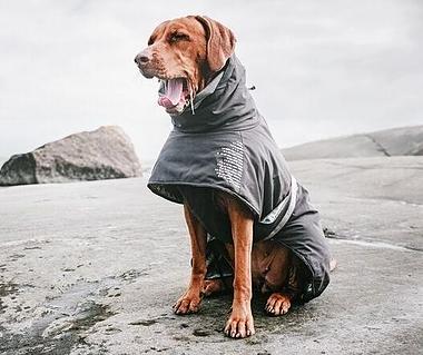 The Extreme Warmer By Hurtta - The Extreme Warmer jacket will keep your dog warm even in the most challenging conditions. The reflective foil inside the jacket reflects the dog's body heat and gives the jacket significant, extra warmth. The jacket has been designed to offer protection to your dog's key muscle groups, and the waterproof surface material is soft and comfortable. A high tricot hood warms the dog's neck and can be lifted to protect the ears. High-visibility 3M reflectors improve safety in the dark.• Hurtta pattern reflects body heat• Breathable and water-resistant material• Adjustable back length • Protective hood- 3M reflectors